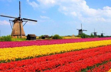 Những điều kiện xin visa Hà Lan